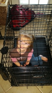 Emma being silly playing in the dog's crate.
